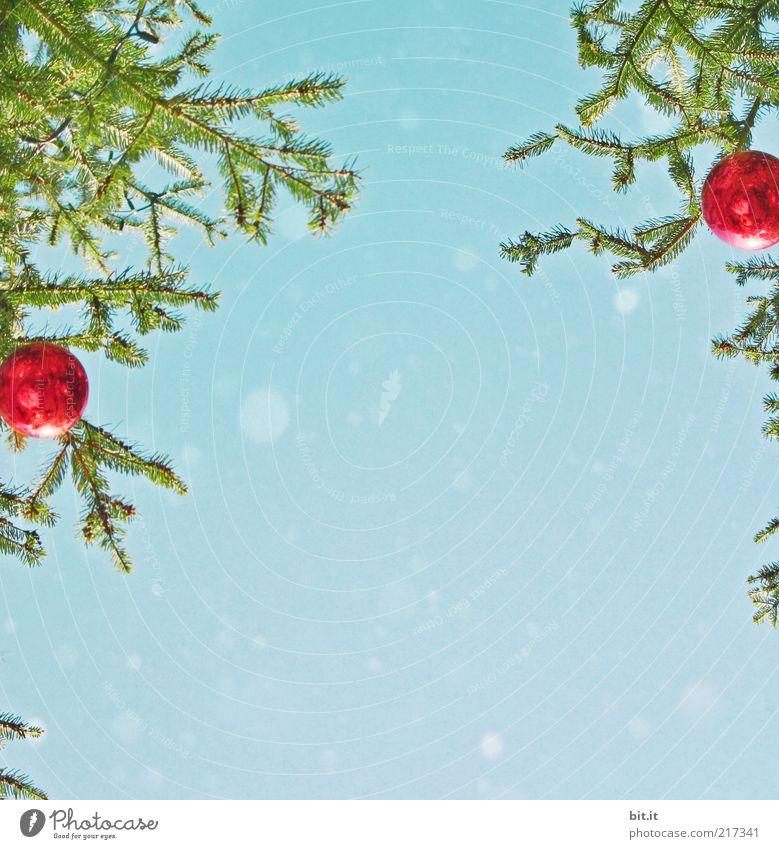 Schneeflöckchen... (II) Feste & Feiern Himmel Winter Schneefall Baum blau rot Tradition Weihnachten & Advent Weihnachtsbaum Weihnachtsdekoration Christbaumkugel