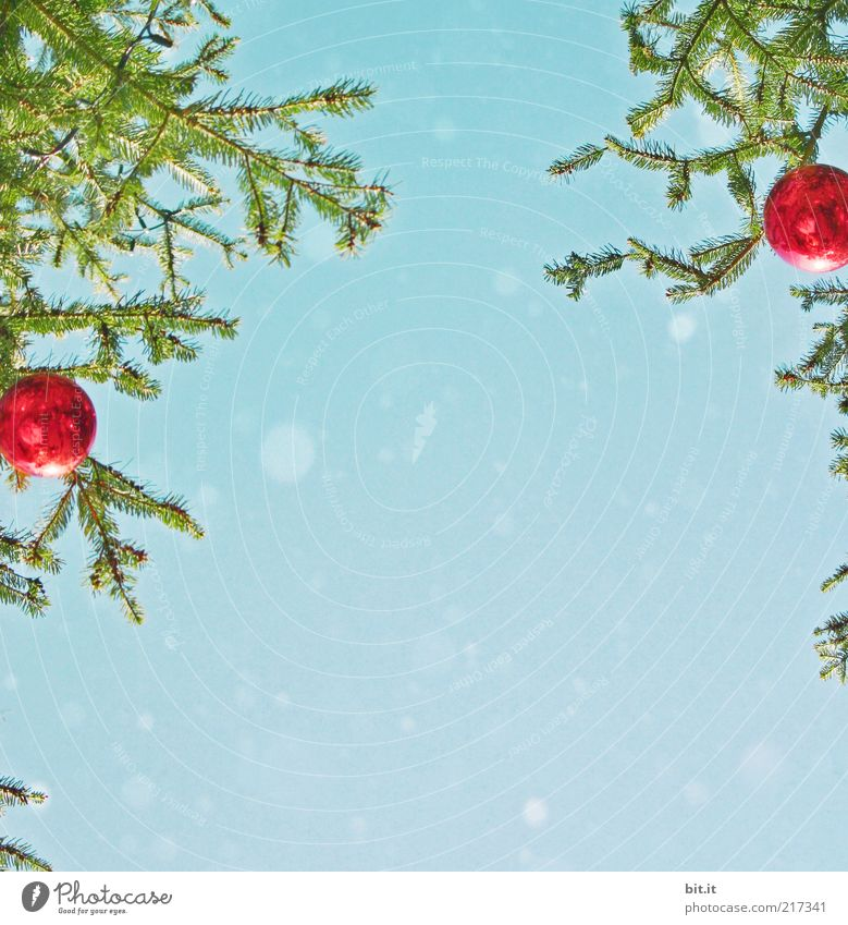 Schneeflöckchen... (II) Weihnachten & Advent Himmel Baum blau rot Winter Schneefall Feste & Feiern glänzend Hintergrundbild Weihnachtsbaum Kitsch