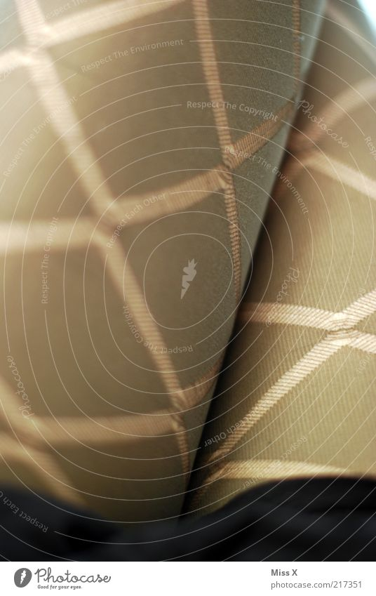 schicke Schenkel Mensch feminin Beine Mode Bekleidung Stoff trashig eng Strümpfe Strumpfhose Junge Frau Oberschenkel Nylon Muster Detailaufnahme