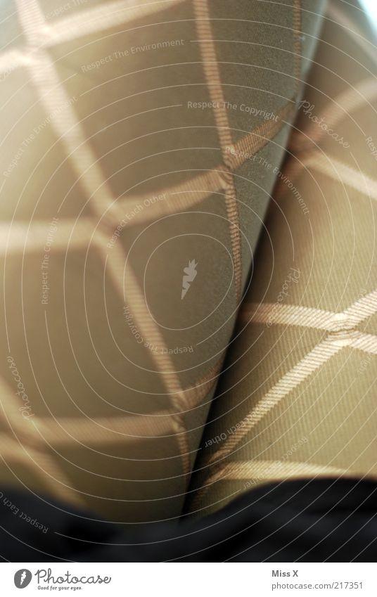schicke Schenkel Mensch feminin Beine Mode Bekleidung Stoff trashig eng Strümpfe Strumpfhose Junge Frau Oberschenkel Nylon Frau Muster Detailaufnahme