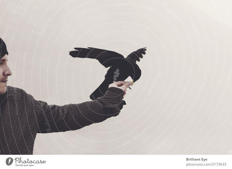 Futter holen Mensch Natur Jugendliche Mann Hand Tier 18-30 Jahre Erwachsene Lifestyle Herbst Tourismus fliegen Vogel wandern maskulin Nebel