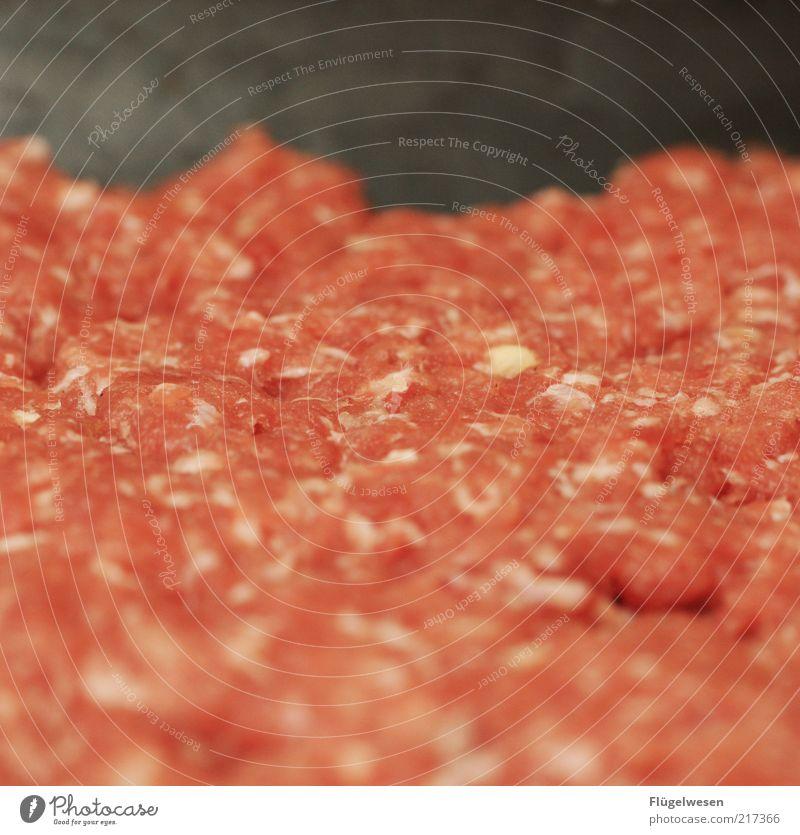 Peter Hacke Lebensmittel Fleisch Wurstwaren Ernährung Hackfleisch Hackepeter Farbfoto Innenaufnahme Unschärfe roh Fleischgerichte Fleischskandal Hintergrundbild
