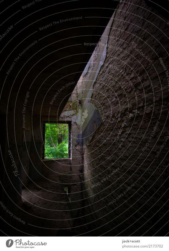 jwd alt Einsamkeit Fenster dunkel Gebäude außergewöhnlich Zeit Stimmung Raum dreckig authentisch Vergänglichkeit Wandel & Veränderung Vergangenheit Verfall