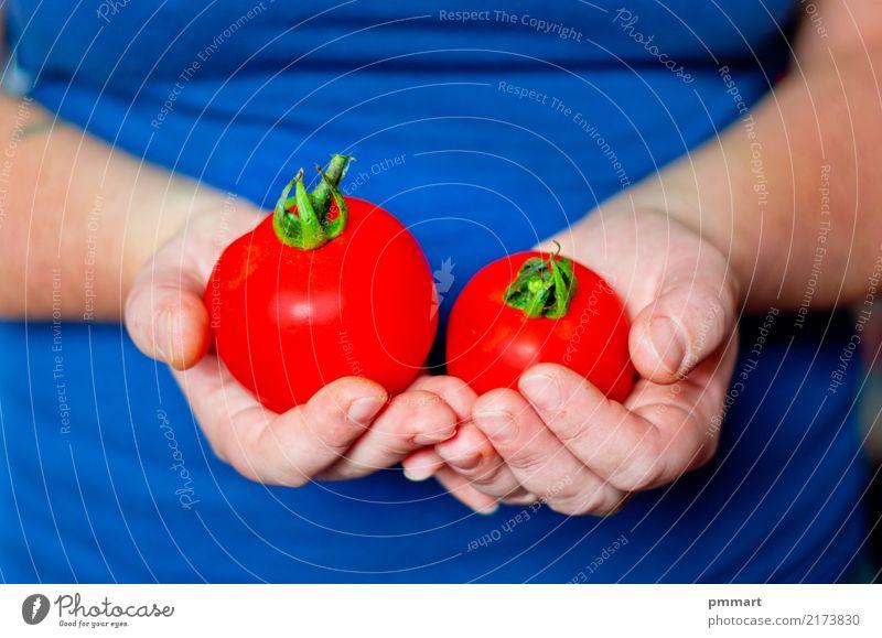 Natur Pflanze blau Farbe grün weiß Hand rot natürlich Garten Frucht Ernährung dreckig frisch Finger Gemüse