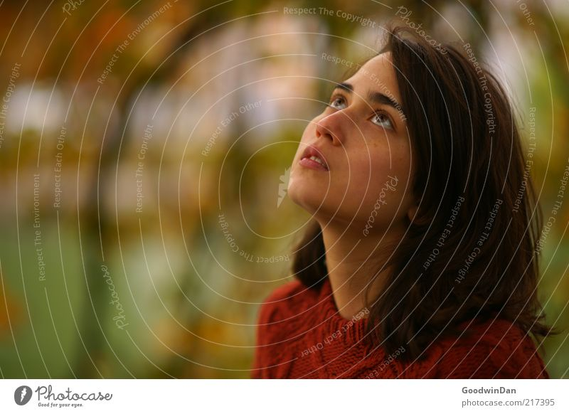 Träume Frau Mensch Natur Jugendliche schön feminin Gefühle träumen Haare & Frisuren Stimmung Erwachsene Umwelt Hoffnung brünett Gebet Erwartung