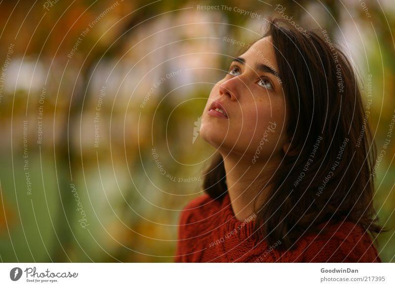 Träume Mensch feminin Junge Frau Jugendliche Erwachsene 1 18-30 Jahre Umwelt Natur Haare & Frisuren brünett schön Gefühle Stimmung träumen Blick Erwartung