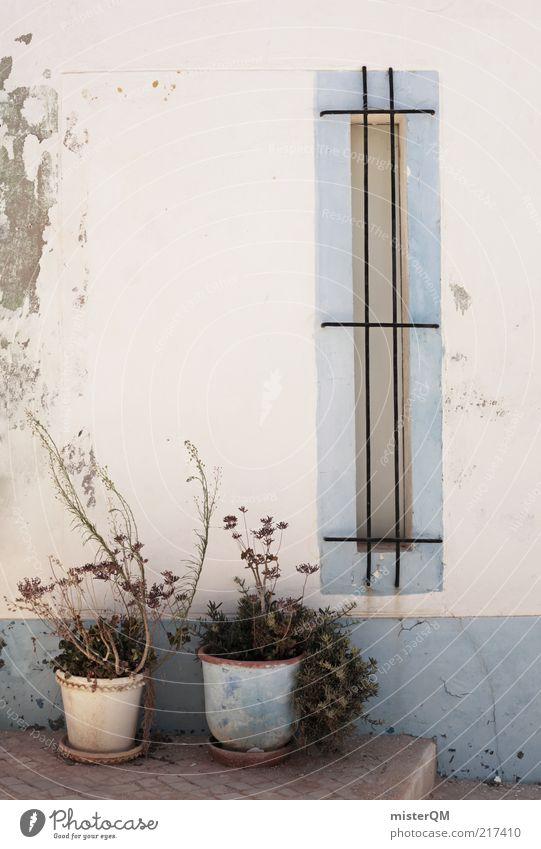Straßenrand. weiß blau ruhig Wand Fenster Fassade ästhetisch Wandel & Veränderung Verfall Balkon Putz Portugal Hinterhof vertrocknet
