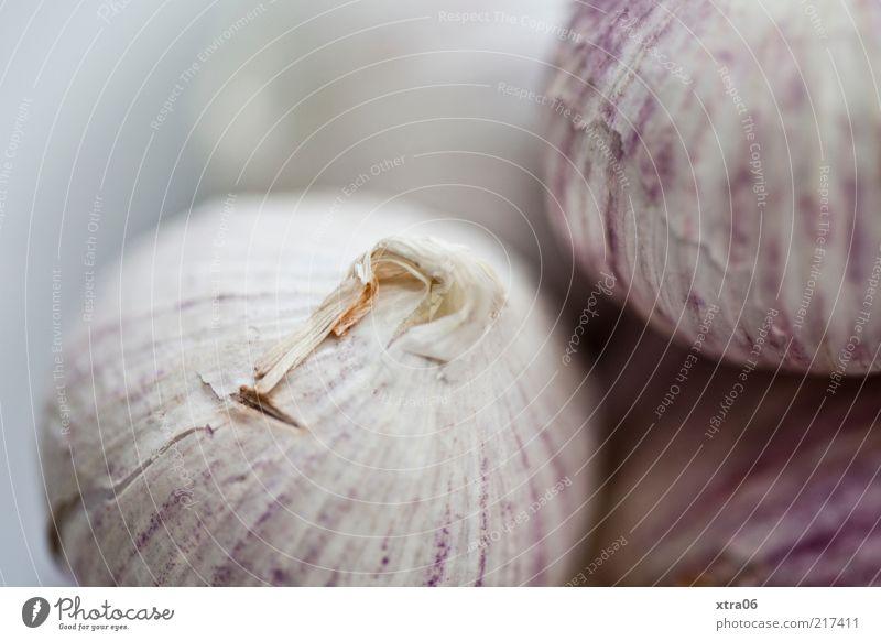 knobi Kräuter & Gewürze Ernährung lecker Knoblauch Knoblauchknolle Farbfoto Innenaufnahme Nahaufnahme Detailaufnahme Schwache Tiefenschärfe Makroaufnahme Knolle