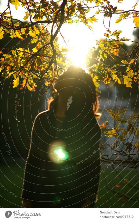 Der Sonne trotzen Frau Mensch Natur Jugendliche Herbst feminin Gefühle Freiheit träumen Park Wärme Stimmung Erwachsene Umwelt frei