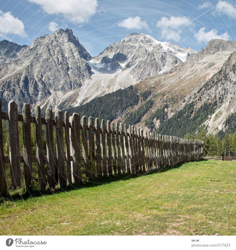Eingezäunt. (Antholz [5]) Schönes Wetter Wiese Alpen Berge u. Gebirge Hochgall Montalalm Alm Zaun historisch mehrfarbig grün ruhig Umwelt