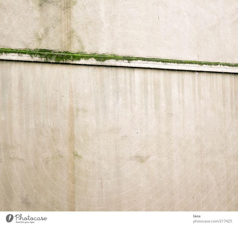 [HH10.1] - Biotop Moos Haus Mauer Wand Fassade Sims alt dreckig Farbe Wandel & Veränderung verputzt Putz Spuren Schimmelpilze grün Anstrich Sediment Wasserfleck