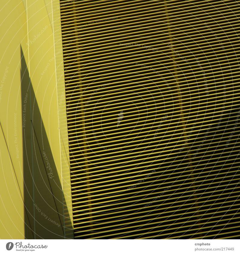 Schattenkabinett grün Haus Wand Architektur Mauer Metall Linie Fassade Hochhaus ästhetisch Ecke Furche Licht