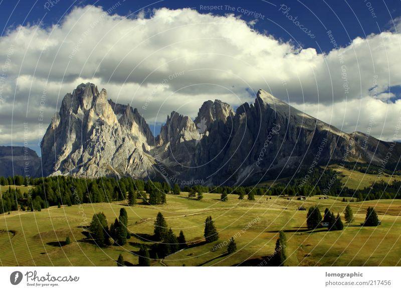 Berg an Gräsern und Bäumchen Natur Baum Sonne Ferien & Urlaub & Reisen ruhig Wolken Ferne Wiese Berge u. Gebirge Freiheit Landschaft Felsen Ausflug Tourismus