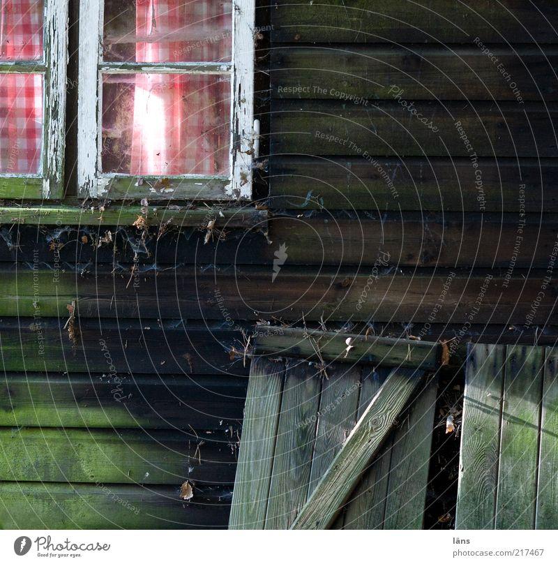 Hüttenromantik alt Fenster Holz dreckig Holzbrett Fensterscheibe Gardine kariert Fensterladen Haus Spinngewebe Holzhütte