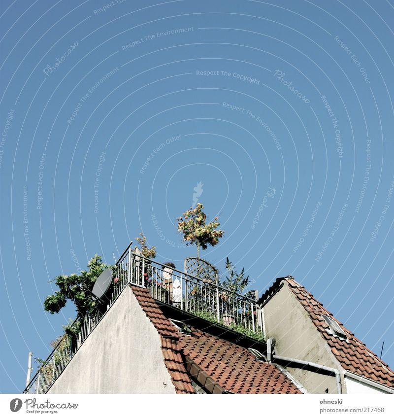 Balkonien alt Pflanze Sommer ruhig Haus Erholung Gebäude Wohnung Dach Häusliches Leben Bauwerk Schönes Wetter Terrasse Blauer Himmel Grünpflanze