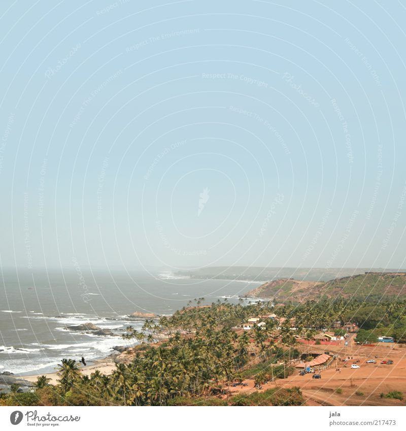 aussicht Natur Landschaft Sand Luft Wasser Himmel Wolkenloser Himmel Sommer Pflanze Baum Palme Wellen Küste Strand Meer Asien Indien Goa Dorf Haus Unendlichkeit