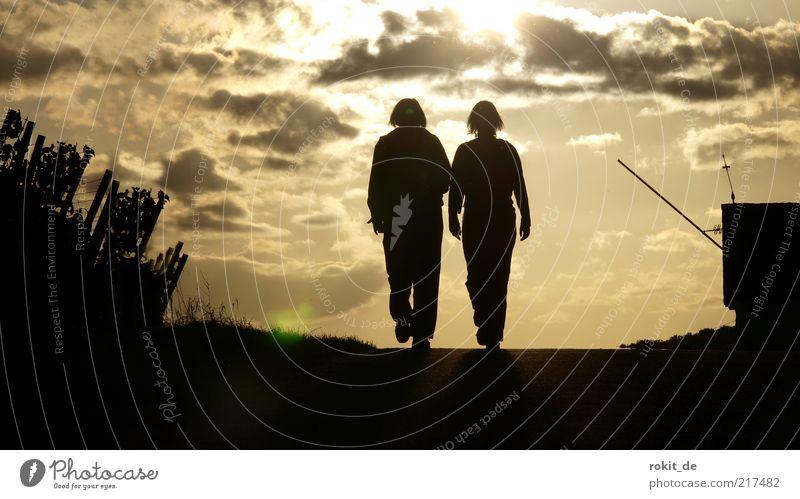 Der Sonne entgegen Frau Mensch Mann ruhig Straße Erholung Glück Paar Freundschaft Zufriedenheit Zusammensein wandern gehen laufen Horizont Hoffnung