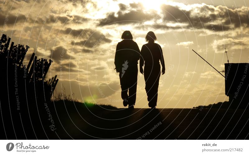 Der Sonne entgegen Zufriedenheit ruhig wandern Mensch 2 Sonnenaufgang Sonnenuntergang Sonnenlicht Fußgänger Straße Erholung laufen Glück Einigkeit