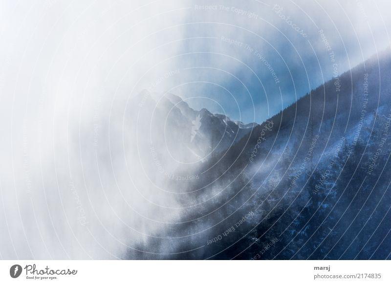 Lichtblicke Natur blau Baum Erholung ruhig Winter Berge u. Gebirge kalt Herbst außergewöhnlich Schneefall Nebel Kraft Erfolg Gipfel Neugier