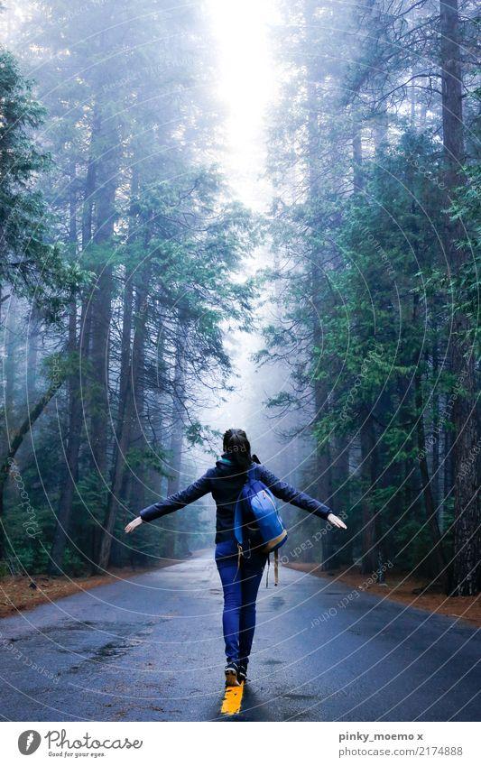 Der Weg wandern feminin Junge Frau Jugendliche Körper 1 Mensch 18-30 Jahre Erwachsene Nebel Baum Wald brünett außergewöhnlich Lebensfreude selbstbewußt
