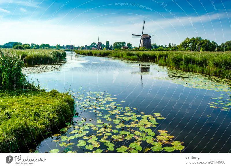Traditionelle niederländische Windmühle Ferien & Urlaub & Reisen Tourismus Landschaft Park Fluss Gebäude Architektur grün Alkmaar Europa Niederlande farbenfroh