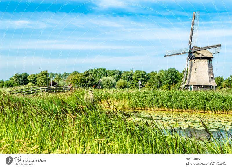 Traditionelle niederländische Windmühle Ferien & Urlaub & Reisen Tourismus Landschaft Park Gebäude Architektur grün Alkmaar Europa Niederlande farbenfroh Feld