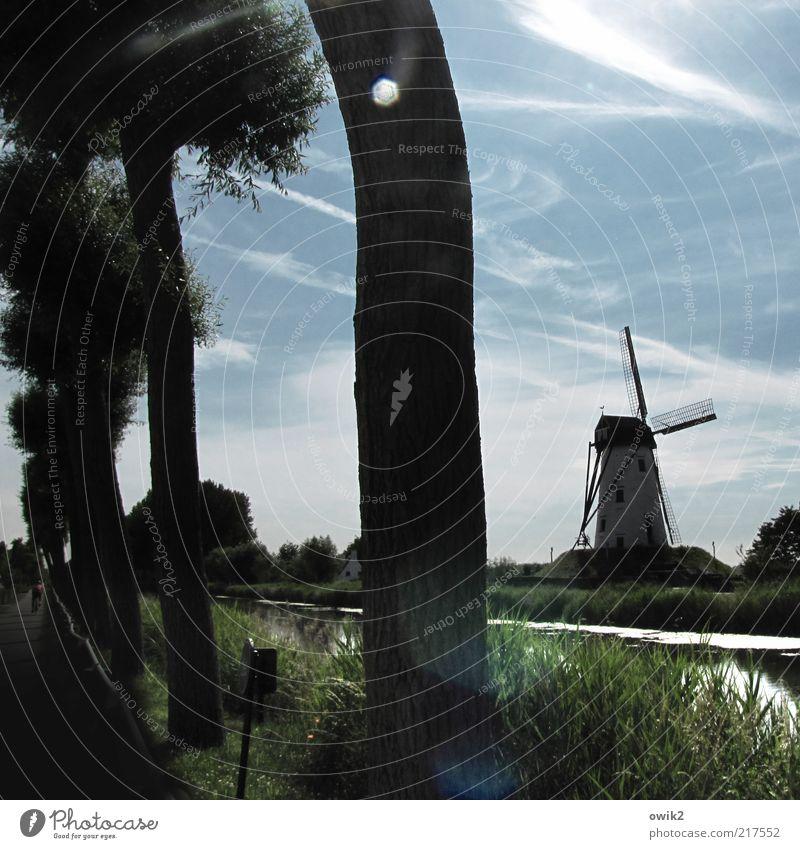 Wolken schaufeln Natur Landschaft Pflanze Luft Wasser Himmel Horizont Baum Gras Sträucher Damme Flandern Belgien Westeuropa Bauwerk Gebäude Architektur