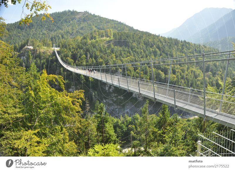 highline 179 -2 Architektur Landschaft Sonnenlicht Sommer Schönes Wetter Wald Berge u. Gebirge Bauwerk Sehenswürdigkeit Wahrzeichen Brücke Metall Stahl
