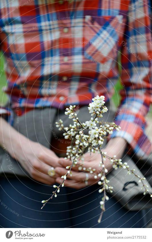 Achtsamkeit Mensch weiß Hand Erholung ruhig Frühling Zufriedenheit Freundlichkeit Hilfsbereitschaft Wellness Wohlgefühl harmonisch Gelassenheit Meditation Duft