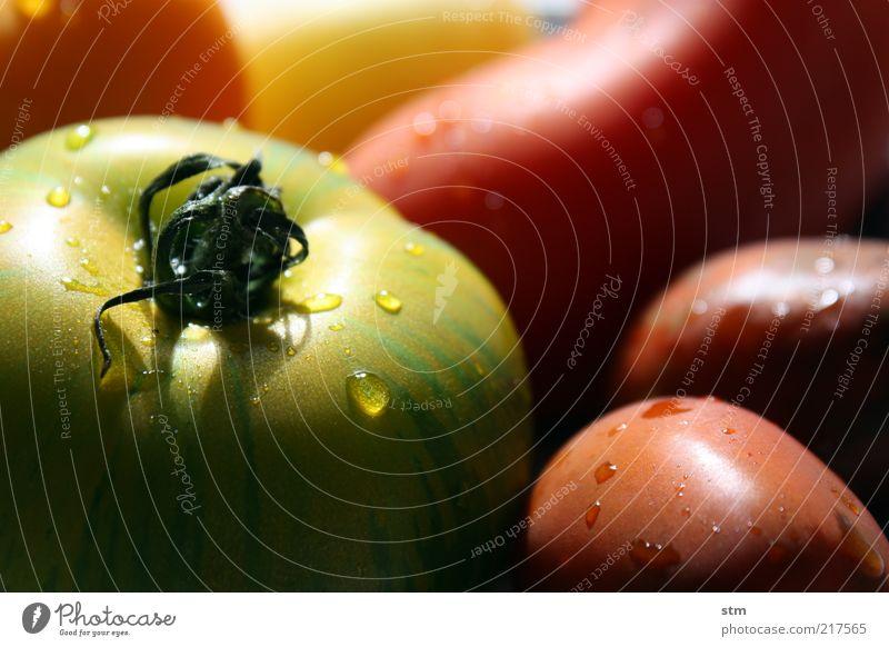vitamine Natur grün schön rot gelb Leben Gesundheit Lebensmittel frisch Ernährung ästhetisch Wassertropfen Gemüse reif Bioprodukte Diät