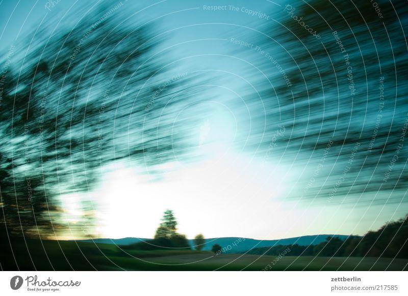 Halbmarathon Natur Himmel Baum Blatt Ferne Landschaft Umwelt Horizont Geschwindigkeit Fröhlichkeit fahren Hügel Dynamik Schönes Wetter Allee Blauer Himmel