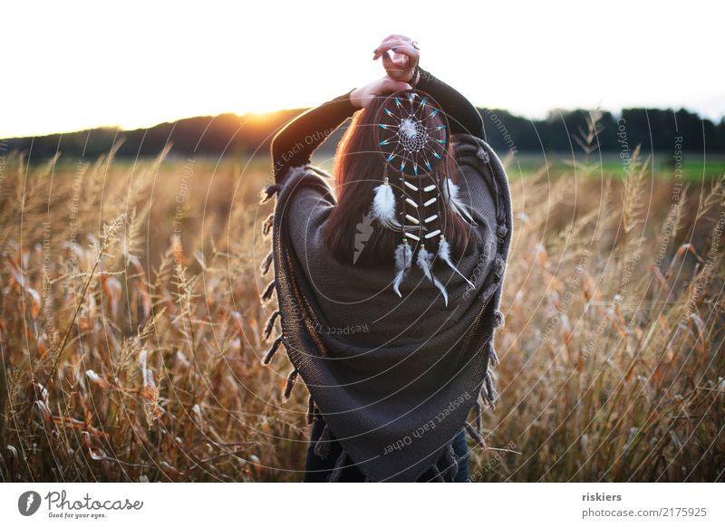 indian summer iii Mensch Natur Jugendliche Junge Frau Sommer Landschaft Umwelt Herbst natürlich feminin braun Zufriedenheit träumen frei 13-18 Jahre Feld