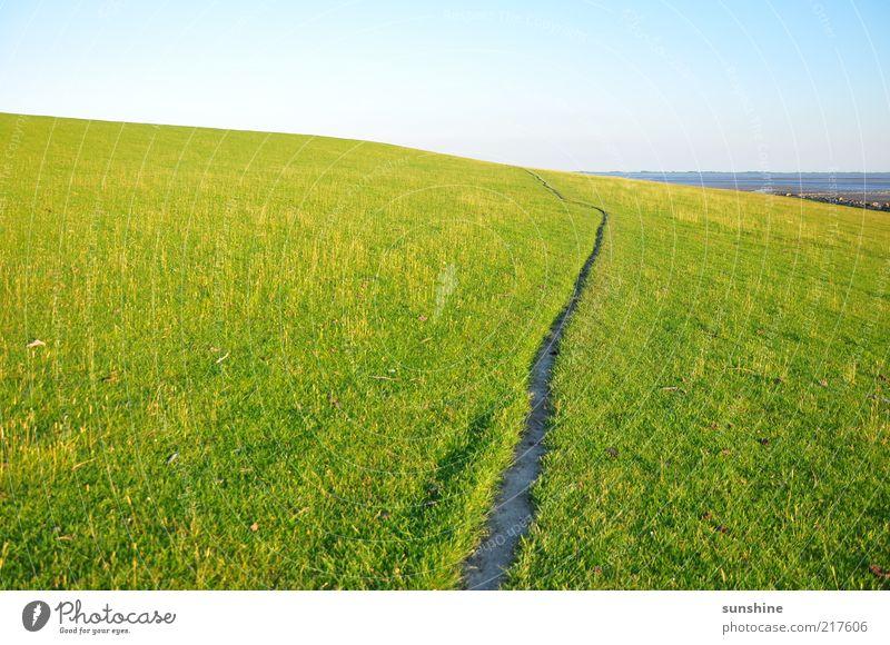 Der Weg schön Himmel grün Sommer Ferne Wiese Gras Landschaft Zufriedenheit Küste nass Meer Hügel Schönes Wetter Nordsee saftig
