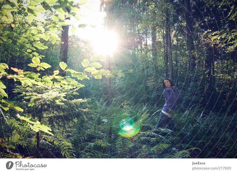 wildness 02 Freizeit & Hobby Abenteuer Expedition Sommer Frau Erwachsene Leben 1 Mensch Natur Sonne Pflanze Baum Sträucher Wald Jeanshose Pullover beobachten