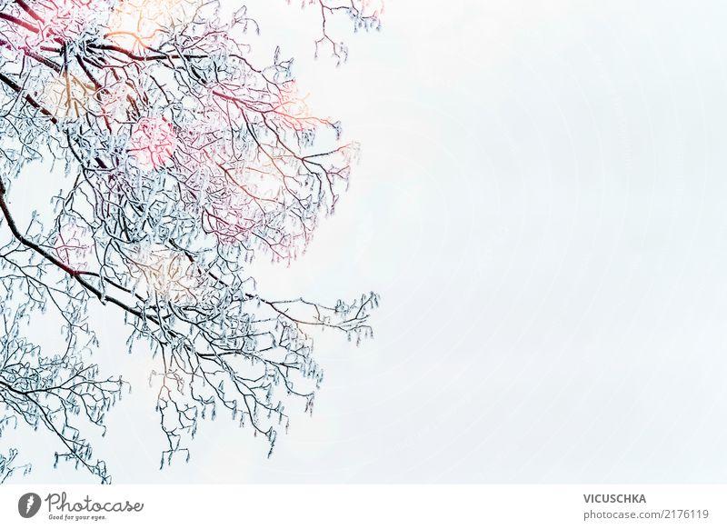 Winter hintergrund himmel ein lizenzfreies stock foto for Foto hintergrund weihnachten