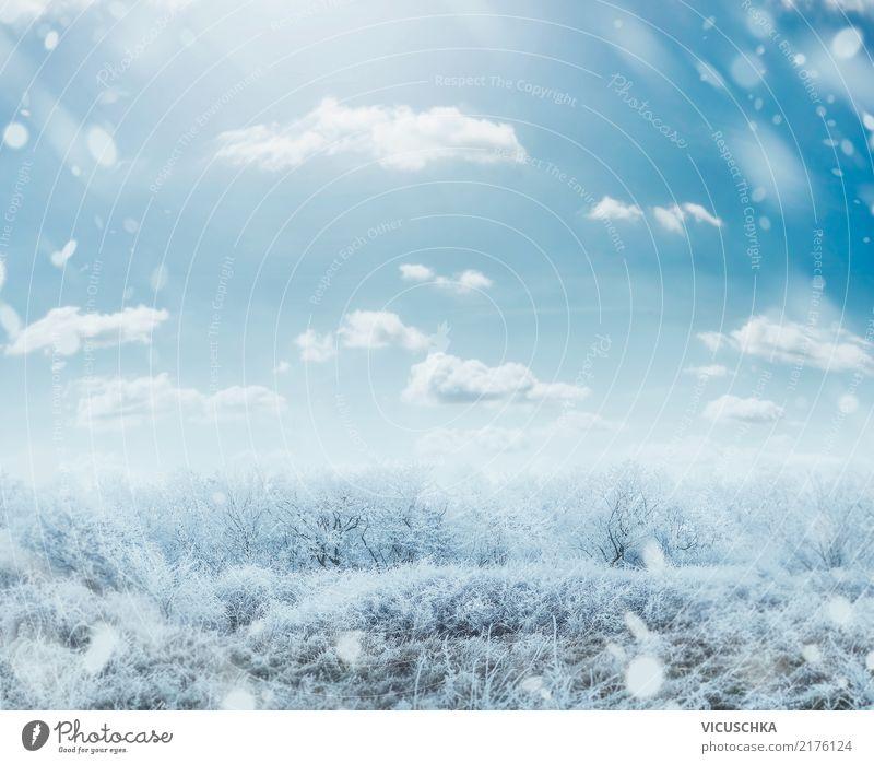 Winter frostiger Tag Landschaft Himmel Natur Weihnachten & Advent Baum Lifestyle Hintergrundbild Schnee Gras Garten Schneefall Park Sträucher Schönes Wetter