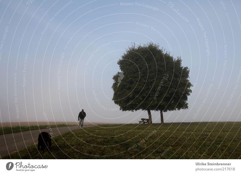 Frühsport Leben wandern Mensch maskulin 1 Natur Landschaft Himmel Herbst Nebel Baum Gras Feld Fußgänger Straße Tier Haustier Hund gehen natürlich ruhig