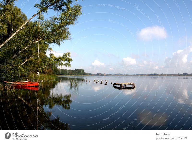 heile welt Natur Wasser Himmel Baum rot Sommer Ferien & Urlaub & Reisen ruhig Wolken Einsamkeit Ferne Wald Erholung Frühling Freiheit See