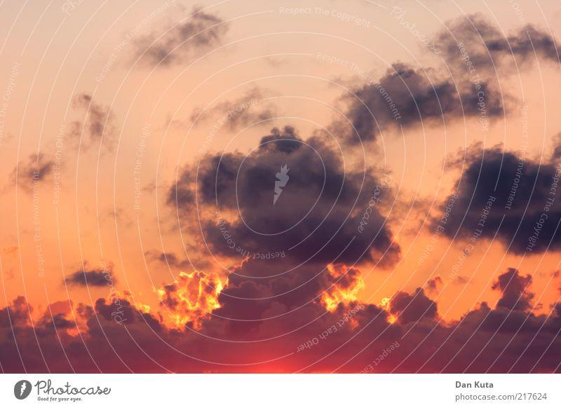 Sonnenexplosion Himmel rot Sommer Wolken Herbst Kraft Wetter genießen Schönes Wetter Druck Sonnenaufgang Explosion glühen Glut Ausbruch Natur