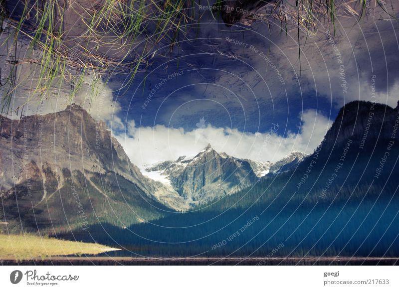 verkehrte Welt Natur Landschaft Wasser Himmel Wolken Sommer Herbst Schönes Wetter Pflanze Gras Wald Berge u. Gebirge Gipfel Schneebedeckte Gipfel Seeufer