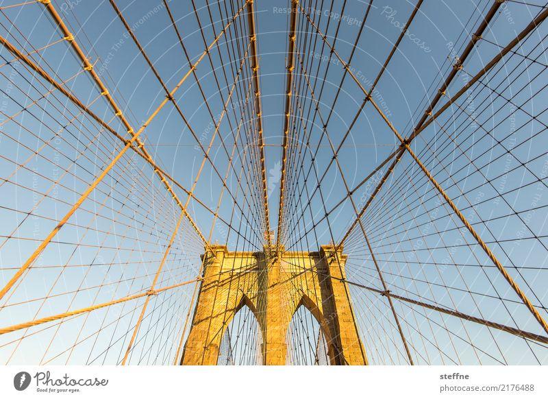 Brooklyn Crawler New York City Brooklyn Bridge Manhattan USA Stadt Brücke Bauwerk Sehenswürdigkeit Wahrzeichen Bekanntheit Netz Spinnennetz spider man Seil