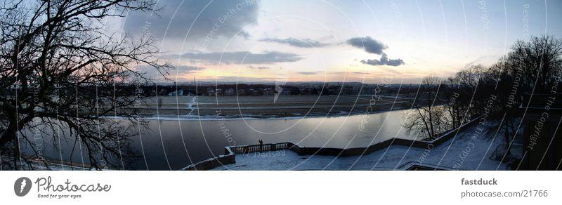 Fernsucht (Panorama) Panorama (Aussicht) Dresden Winter Wolken Terrasse Baum Sonnenuntergang Elbe blau blue Fluss Wasser river water clowds Abend groß