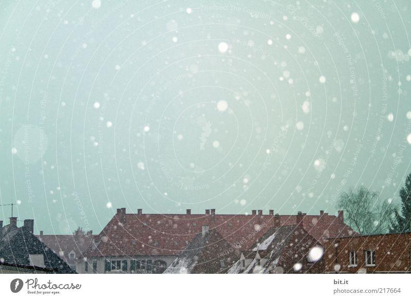 Leise rieselt der Schnee Natur Himmel Winter Klima Eis Frost Schneefall Dorf Kleinstadt Stadt Haus Dach Schornstein kalt nass blau weiß Vorfreude ruhig