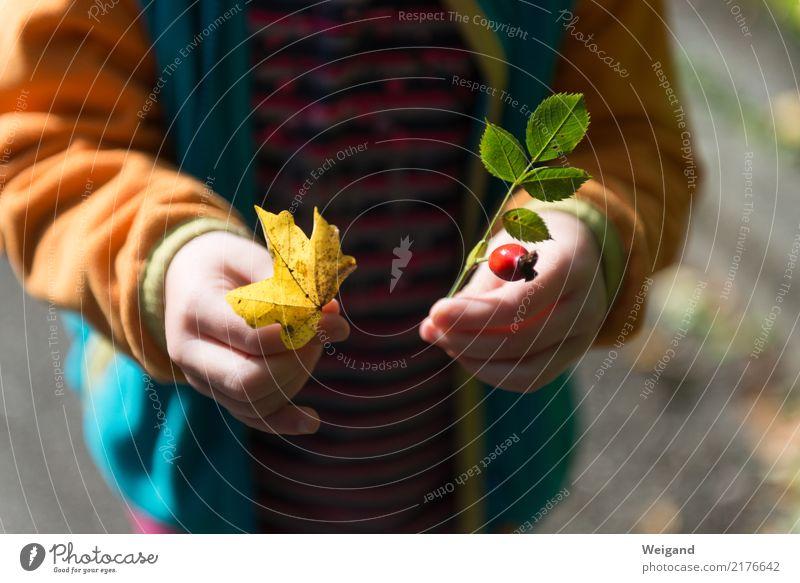 Fundbüro II harmonisch Wohlgefühl Zufriedenheit Sinnesorgane Erholung ruhig Meditation Duft Kinderspiel Kindererziehung Kindergarten Schule lernen Mädchen 1
