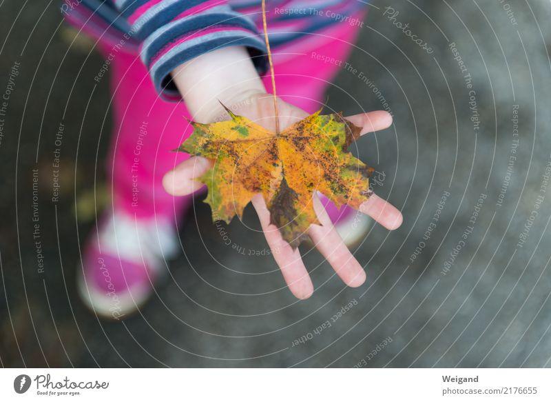 Goldstück Kindererziehung Kindergarten Kleinkind Hand 1 Mensch 1-3 Jahre 3-8 Jahre Kindheit berühren Lächeln mehrfarbig gelb rosa achtsam Gelassenheit geduldig