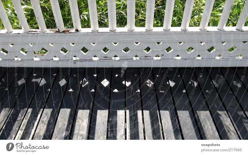 light lines Natur weiß grün Sommer Blatt Erholung Gefühle Holz Luft Zufriedenheit Brücke ästhetisch Frieden Lebensfreude Gelassenheit Schönes Wetter
