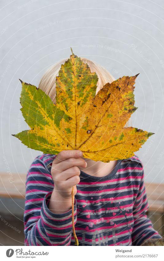 Herbstkind Kind Mensch Blatt Freude Mädchen Leben gelb Familie & Verwandtschaft Glück rosa Zufriedenheit frei Kindheit Fröhlichkeit Lebensfreude