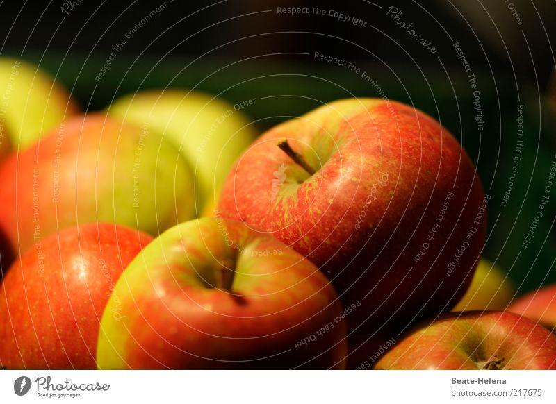 An apple a day keeps the doctor away grün rot Leben Ernährung Herbst Gesundheit Frucht Apfel Stengel Lebensfreude lecker reif Bioprodukte Diät Qualität