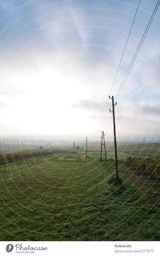 Weinberg grün blau Wolken Ferne Erholung Wiese Herbst Freiheit träumen Landschaft Zufriedenheit Feld Nebel Horizont frisch Energiewirtschaft