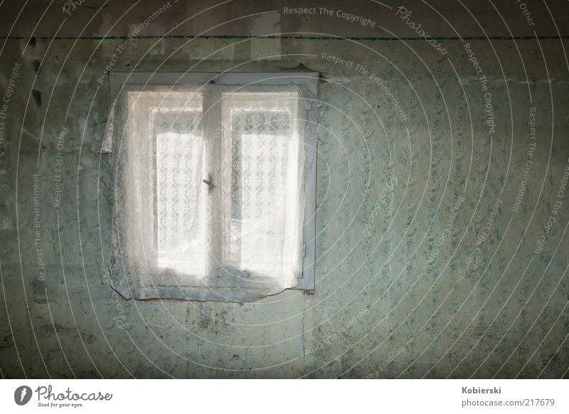 Blick zurück Wohnung Tapete Fenster Hütte Mauer Wand warten Häusliches Leben alt Armut einfach kaputt blau grau grün bescheiden zurückhalten Traurigkeit